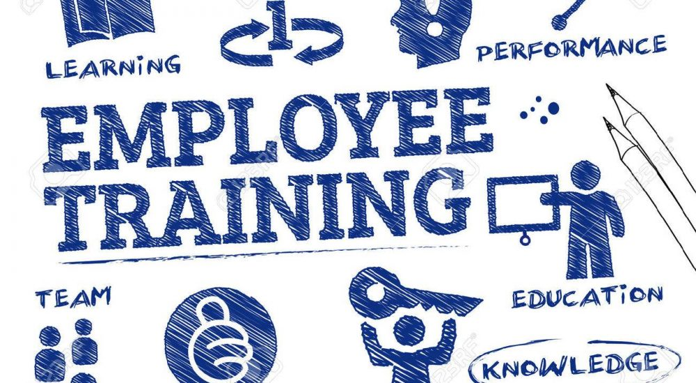 Training-and-Development-employees